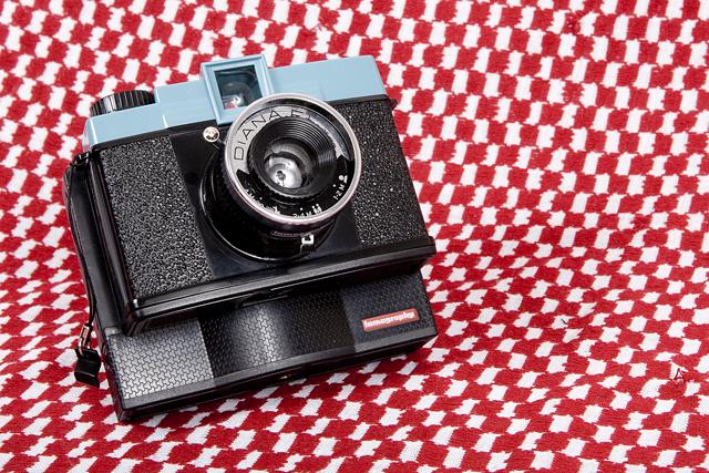 One Year / Twelve Cameras – Diana F+ (November)
